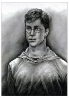 'Harry Potter' - OotP by leiaskywalker83
