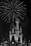 Wishes! Magic Kingdom Fireworks by whytheface92