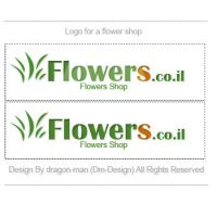 Flowers.co.il by Dm-Design