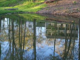 Into the Reflection by Raphaere