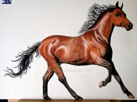 horse in mixed media by rimrimrim