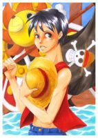 OP - Luffy and Sunny by Sanogirl