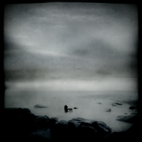 The Survivor by intao