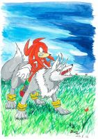Knight Knuckles,Wolf Silver by amberday