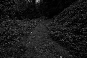 Dark and Lonely Path by Jordanart4peace