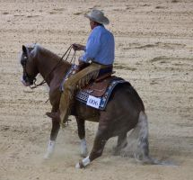 STOCK - Equitana 2013-190 by fillyrox