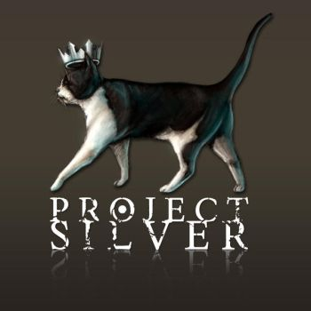Project Silver Logo by catandcrown