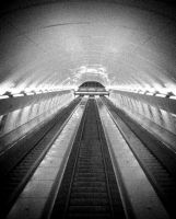 :the tunnel by my35
