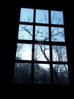 From the Window by coloradorebel