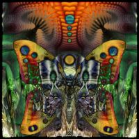 Ab09 Psychedelic Butterfly by Xantipa2-2D3DPhotoM