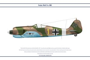 Fw190A4 JG2 1 by WS-Clave