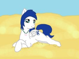SaphireSong on the beach by saphiresong98