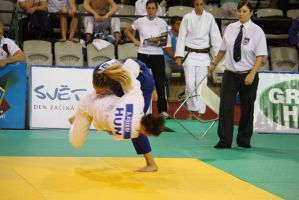 Ippon by freejack57