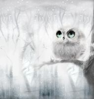 White Owl by janaalus