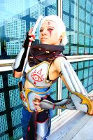 Impa is in Charge Now by GandaKris