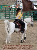 Rodeo13-13 by AstriexEquineStock