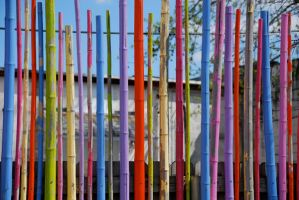 Painted Bamboo by touchthetruth