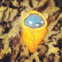 little kitten wrap by UglyDoll311