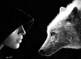 Who is the real wolf ? by MM-ARTDrawing