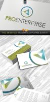 RW Pro Enterprise Corporate Identity by Reclameworks