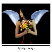 the angel song by ahmed101