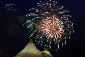 Canada Day 2009 2 by Nebey