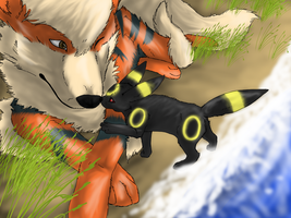 Arcanine and Umbreon by DemonNagareboshi