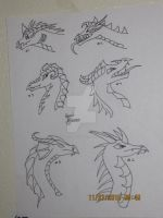 Different Dragon Styles by Comet-Glaceon