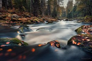 Autumn in Palsankoski by m-eralp