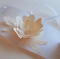 beautiful tender pop-up card by Elmiko