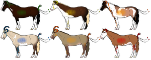 Equus meridiem adoptables by Lily-Pad-Stables