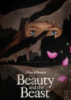 Disney Classics 30 Beauty and the Beast by Hyung86