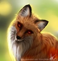 fox by Llirika