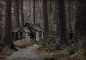 House in the forest by ToxicZombieWhore