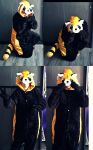 Pabu Cos by Jack-a-Lynn