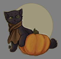 Pumpkin Possibilities by ToLoveaKiwi