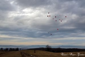 Love is in the air by cridiana