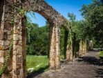 Garden Arches by mryomero
