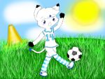 Star soccer!!! by startail1203