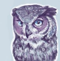 Owl. by Scoutrageous