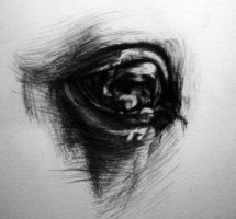 Horse Eye Doodle by Christa-S-Nelson
