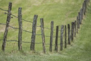 stakes by Mark-Heather
