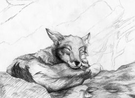Wolf Pup taking a nap by nativeEvil