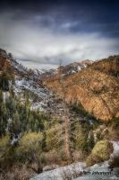 Soft Winter Light HDR by mjohanson