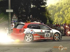 vw polo 09 wrc by ROOF01
