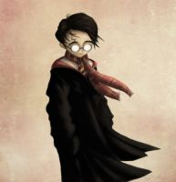 Harry Potter by Domiticus