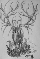 Branches for Antlers by DarccWrath