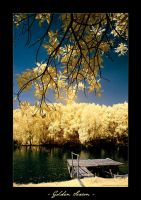 INFRARED: Golden Season by brumie
