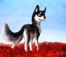 Husky and Red Flowers by Late-S