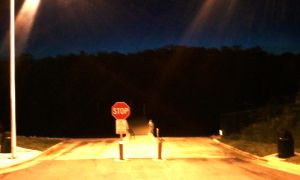 Stop Night by nelsonpray